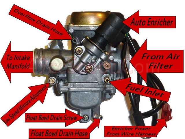 Carb on 150cc Spiderbox Vacuum Line Diagram